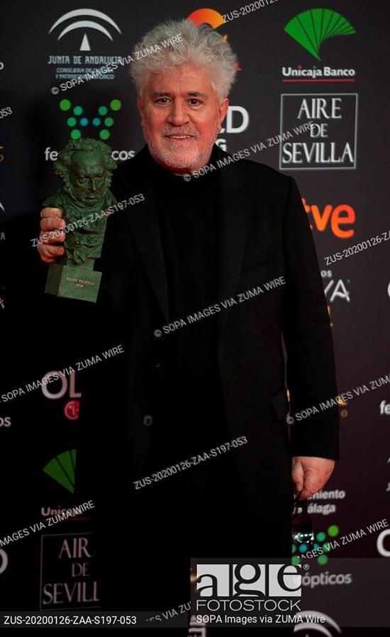El director Pedro Almodóvar durante la gala de entrega de los Premios Goya 2020 en Málaga