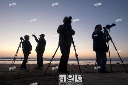Photographers' Profiles