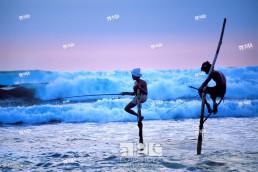 Stilt fishermen at dusk, Weligama region, Sri Lanka.