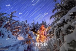 Moonlight illuminates snow covered trees and a Christmas tree in Nebraska.
