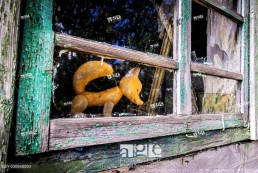 Plastic toy in abandoned house in Mashevo village of Chernobyl Nuclear Power Plant Zone of Alienation area around nuclear reactor disaster in Ukraine.