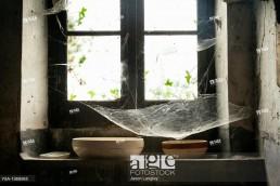 Window with cobwebs