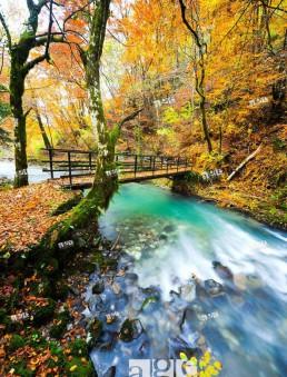 River Curak in Zeleni vir park near Skrad in Croatia, long exposure tripod shot
