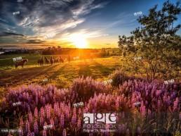 Breathtaking calendar images