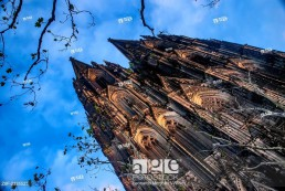 The Cologne Cathedral (Kölner Dom) from below.