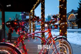 USA, Colorado, Crested Butte, Elk Avenue, bicycle covered in colored lights