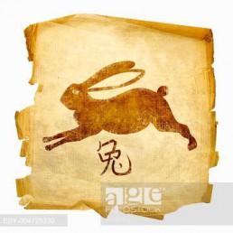 Rabbit Zodiac icon, isolated on white background.