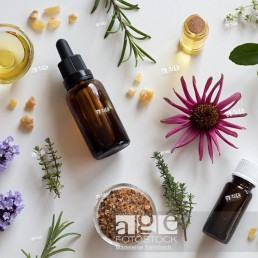 Bottles of essential oil with rosemary, thyme, creeping thyme, echinacea, wintergreen, lavender, myrrh and frankincense on a white background
